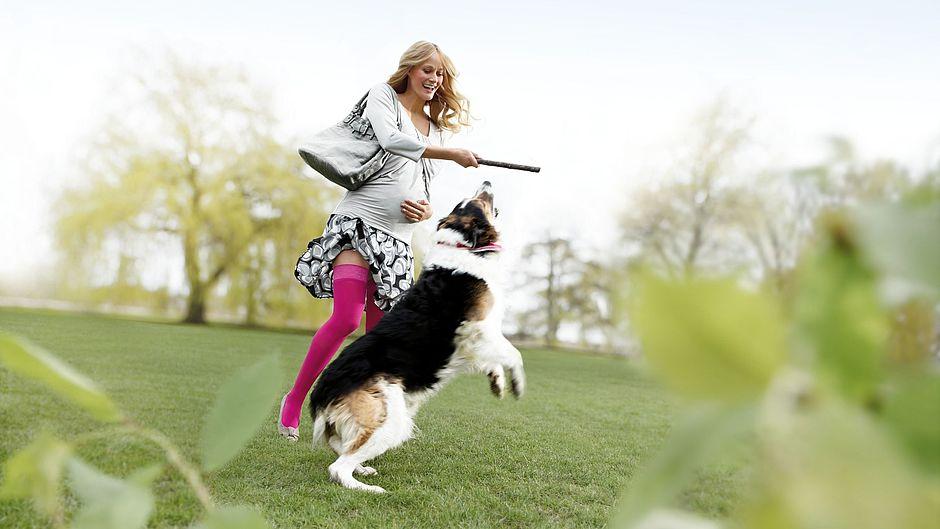 Schwangere Frau mit Hund trägt mediven elegance